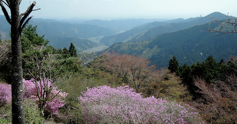 A view from Mt.Mitake