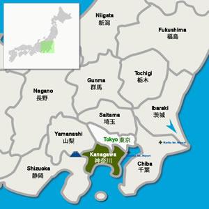 Tokyo Vincity Subway Map.Kiku Flower Chrysanthemum Festivals In Tokyo Vicinity Digi