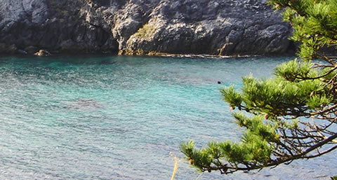 Shikinejima in Tokyo Islands for Onsen and Beach Resorts digijoho